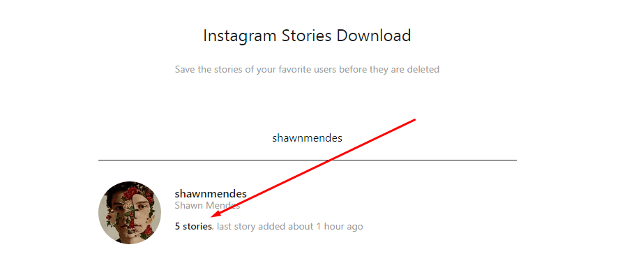 Save Instagram Stories Online